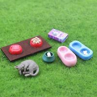 Dollhouse miniature scene model dolls house accessories mini cat dog food _ws