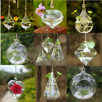 Hanging Glass Ball Vase Flower Plant Terrarium Container Home Garden Party Decor