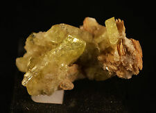 BRASILIANITE SUR ORTHOCLASE DU BRESIL mineraux de collection