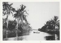 "*Postcard-""Rowboat on East Coast Canal"" *Florida (A36-2)"