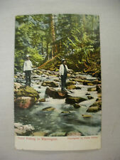 VINTAGE POSTCARD PEOPLE IN A STREAM TROUT FISHING IN WASHINGTON UNUSED