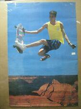 vintage skate boarder Grand Canyon skateboarding Poster 1987 12310