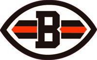 Cleveland Browns Vinyl Decal / Sticker 5 sizes!!