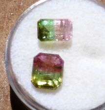 Pair Faceted Step cut Bi-Colored tourmalines from Himalaya Mine Ca. (TCW 4.20)