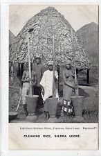 CLEANING RICE: Sierra Leone postcard (C20378)