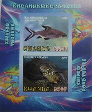Endangered species bala tricolor shark, turtle s/s Rwanda 2009 MNH IMPERF #F137