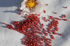 11/0 Old Time French Glass Ruby Red  White Heart Seed Beads