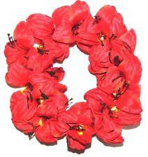 Amaryllis Wreath Battery Operated Lights Up
