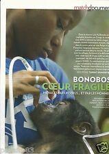 Coupure de presse Clipping 2012 Les Singes Bonobos..coeur fragile   (3 pages)