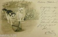 """""""Katzen, Spielzeug, Ball"""" 1901, Prägekarte ♥ (30359)"""