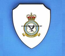 ROYAL AIR FORCE 2 FORCE PROTECTION WING WALL SHIELD (FULL COLOUR)