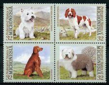 Micronesia MNH Dogs Terrier Irish Setter Springer Spaniel 4v Block Dog Stamps