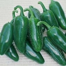 Jalapeno M Pepper *Heirloom* (50 Seed's) <Non-GMO>