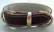 Large Brown Leather Dog Collar & Soft Suede Beige Padded Inner Lining