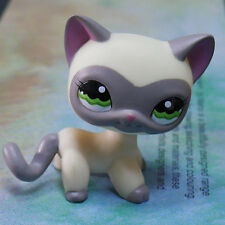 "LPS COLLECTION Figure #1116 GREY MASK YELLOW CAT KITTY 2"" LITTLEST PET SHOP"