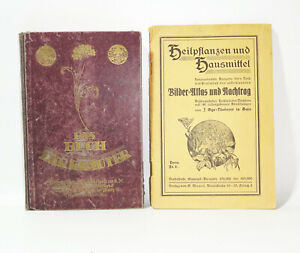 Das Kräuterbuch + Heilpflanzen und Hausmittel 1930 Kräuter Gesundheit Heilung(B3