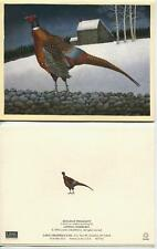 VINTAGE OLD CAMERA CLOCK SPECTACLES 1 PHEASANT GAME BIRD FOLK ART CHRISTMAS CARD
