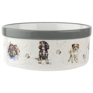 """Wrendale Designs Dog Bowl 6"""" Porcelain Hannah Dale from Royal Worcester"""
