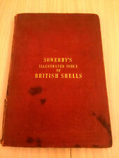 Sowerby's Illustrated Index Of British Shells 1859 - Complete With All 24 Plates