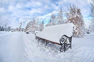 Large Christmas Winter Snow Bench Scene Fibre Optic LED Canvas Picture 60 x 40cm