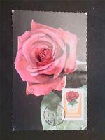 UNGARN MK 1962 FLORA ROSE ROSES MAXIMUMKARTE CARTE MAXIMUM CARD MC CM c6692