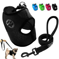 Soft Air Mesh Breathable Dog Harness & Leash Set for Chihuahua Yorkshire S M L