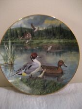 """The Edwin M. Knowles fine china co. plate by bart jerner """" the pintail """" 1986"""