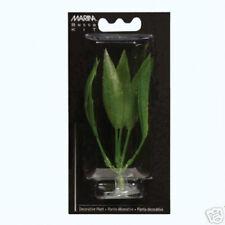"""Hagen Marina Betta Kit Aquarium Plant Amazon Sword 5"""""""