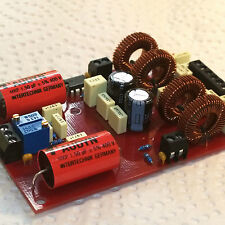 __DIY MODULE 90x58mm 2x25W_Class-T_Amp. Tripath's_TA2021B_IC (soldered & tested)