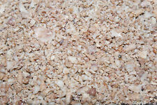 Shell Grit Medium 2.5kg. Source of Calcium & trace elements. Orchids, Birds