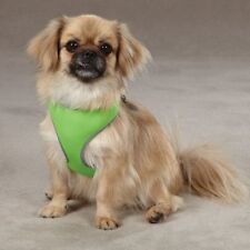 Parrot Green Size XS Nylon Reflective Neoprene Dog Harness