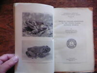 MEXICAN TAILLESS AMPHIBIANS TREE FROGS TOADS LIZARDS OF MEXICO ORIGINAL 1932 EDN