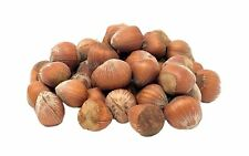 NUTS U.S. Oregon Hazelnuts In shell Whole Raw Unsalted Grocery Gourmet Food