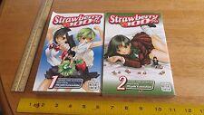 STRAWBERRY 100% Vol. 1 and 2 MIZUKI KAWASHITA JAPANESE ANIME MANGA BOOKS