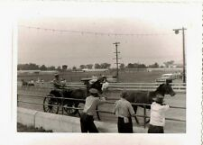 Old Vintage Antique Photograph People Watching Horses At The Race Track