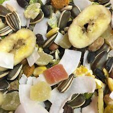 Small Animal Fruity Treat 2 KG Pinapple Papaya Coconut Nut Banana Sunflower Seed