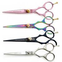 Hair Scissors Hairdressing Scissors Barber Shears in Presentation Case