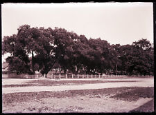 """GLASS NEGATIVE marked  """"NAVAL YARD, KITTERY"""" 1800s-1900s, ROAD, TREES, FENCE"""