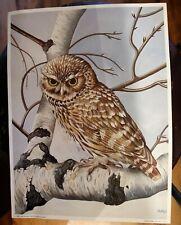 VINTAGE OWL ON SILVER BIRCH  ART PRINT 16x20 1987 LAILA'S B126 CANADA LOOK!!