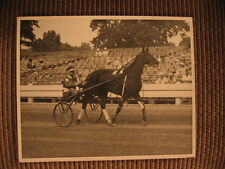 "Standardbred Race Horse ""Her Ladyship"" & driver Dr. Hugh Parshall Vintage Photo"