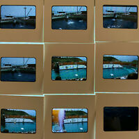 Vintage Lot of 10 Marineland Projector 35mm Slides 1950s 1959 Pacific Orca Whale