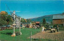 Autumn Fall Pumpkin Patch Equinox Valley Nursery Manchester VT Vermont Postcard