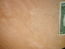 Pearwood Burl Wood Veneer Sheets 18.5 x 44 inches 1/42nd thick   IFPa7367-49