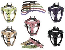 Gooby Luxury Step In Small Breed Dog Harness or Matching Leash or Collar S M L