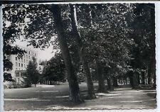 CP 58 Nièvre - Saint-Honoré-les-Bains - Allée des Platanes  et Hôtel Thermal
