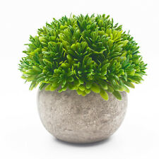 Ebristar Small Artificial Plants with Gray Pot for Home & Office Desk Decortion