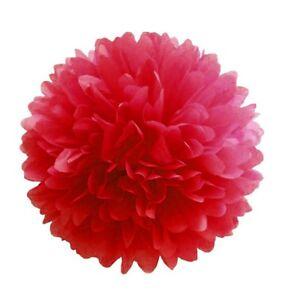 5pcs Tissue Paper Pom Poms Flower Balls Wedding Party Decor Supplies A11US