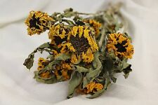 NATURAL DRIED YELLOW SUNFLOWER FLOWERS FLORAL FLOWER FOLIAGE