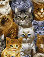 Fat Quarter Stacked Cats Cotton Quilting Sewing Fabric