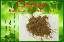 High Quality!! Daisy Extract (Bellis Perennis) Powder 4:1 / 100 grams